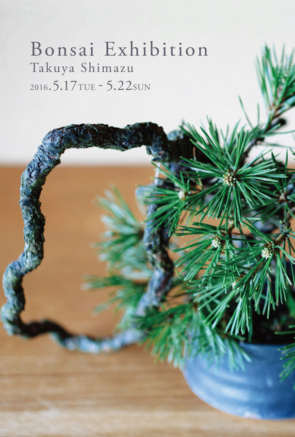 enlc-201605-Bonsai Exhibition