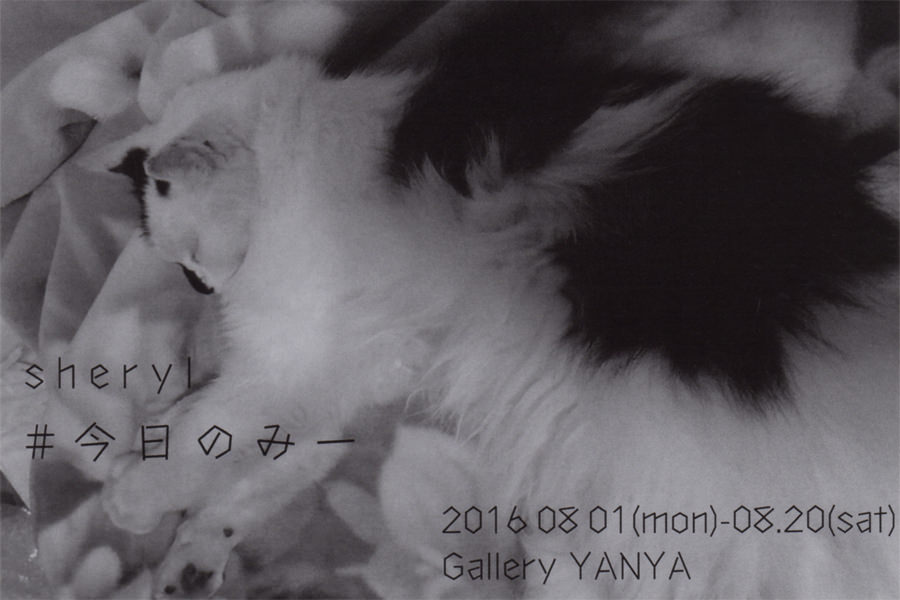 yanya-201608-Sheryl Exhibition #今日のみー