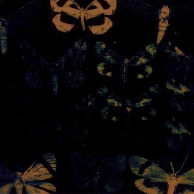 baku-201704-岡村憲吾 写真展 「暗い夜、行く旅路の果々」