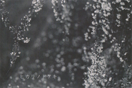 mag-201405-ヒカリノドケキ