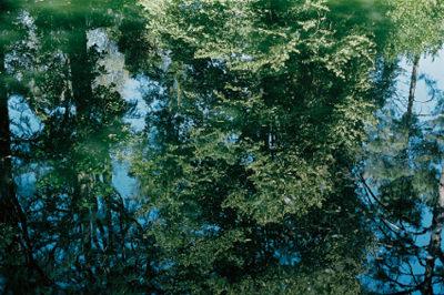 manoma-201406-『 水鏡に入る 』 木下由貴写真展