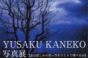 blume-YUSAKU KANEKO 写真展 【君は悲しみの青い空をひとりで飛べるか】-thumb