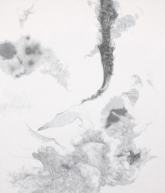 皮相の観察・乙 / 530mm×455mm / 2012 c 柴田高志