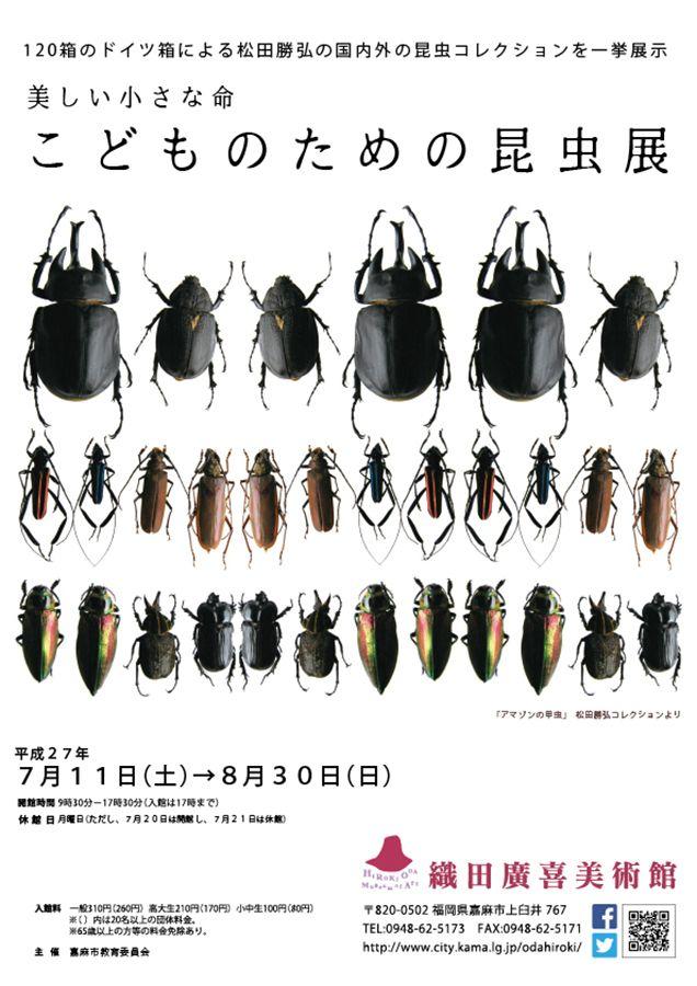 homa-美しい小さな命 こどものための昆虫展