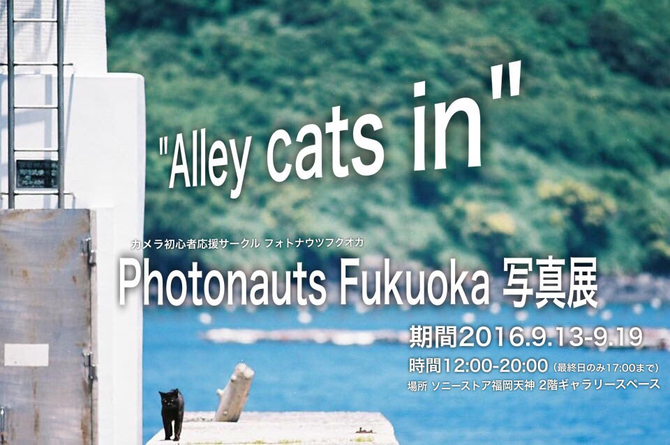 "sony-201609-""Alley cats in"" Photonauts Fukuoka 写真展"