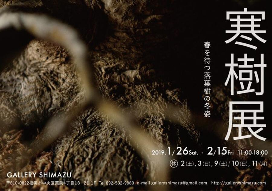 shimazu-201901-寒樹-展覧会1