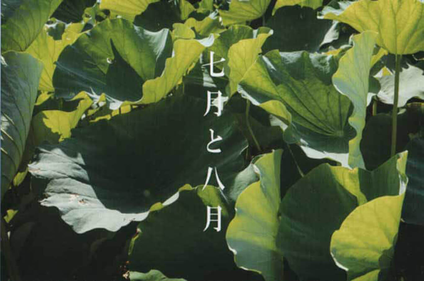 baku-201909-西島善和-写真展