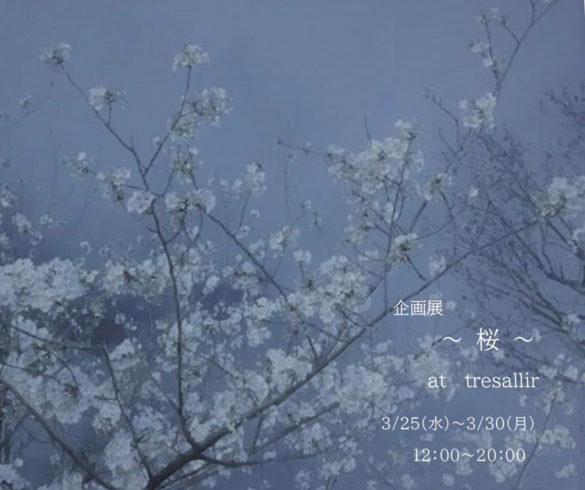tresallir-202003-桜 企画展